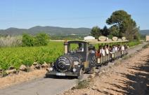 Le petit train des vignes à Saint Jean de Fos