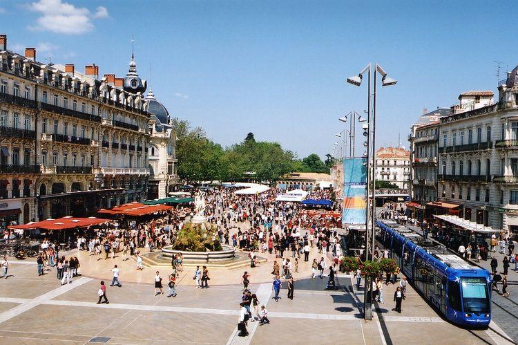 Office de tourisme et des congres montpellier mediterranee metropole office de tourisme et des - Office du tourisme et des congres du grand lyon ...