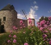 OFFICE DE TOURISME COMMUNAUTAIRE LES AVANT-MONTS - B.I.T. FAUGERES (saisonnier)